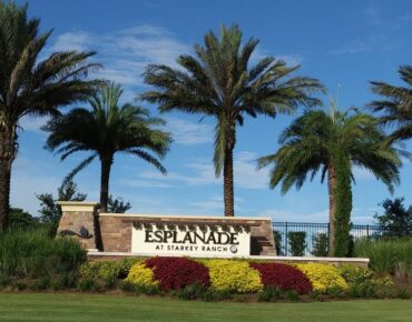 New Homes Esplanade Starkey Ranch