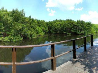 1812 Bough Ave B Clearwater FL Fishing Pier